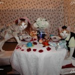 Two of my cats, Esther and Patrick eating dinner. 2007