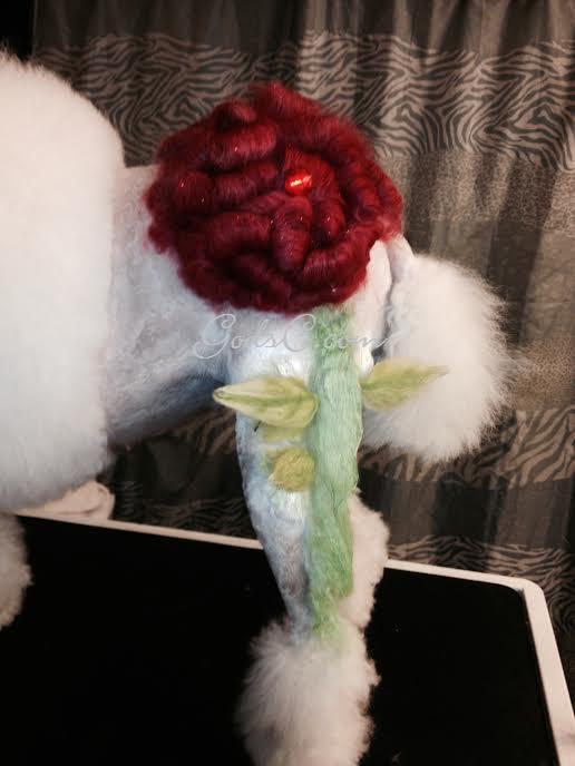 Adalia the Standard Poodle after creative rose groom left side rose view