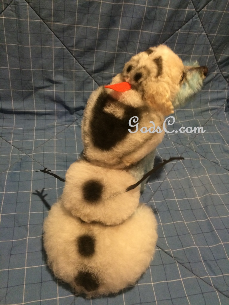 Cody the Bichon Frise Mix as Olaf from Disneys Frozen Creative Grooming p5
