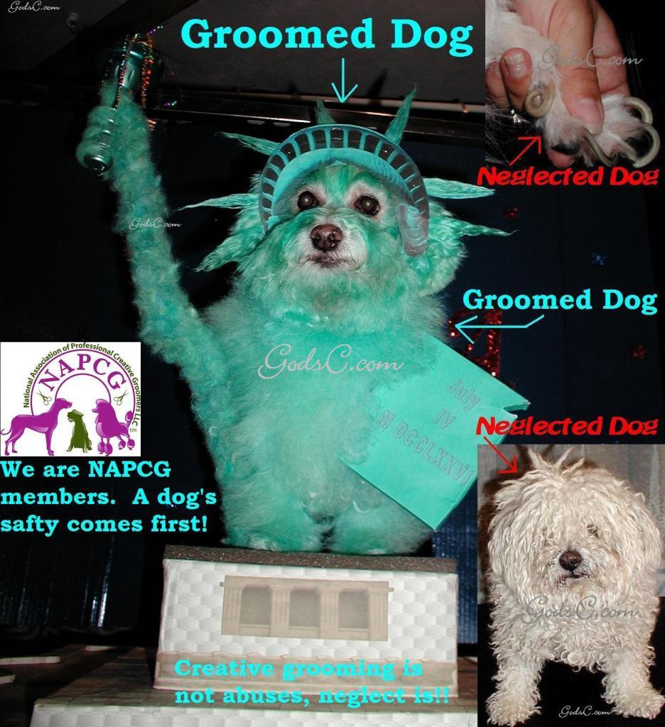 Creative grooming NAPCG