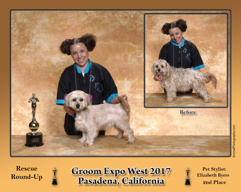 2017 Rescue Round Up Groom Expo West